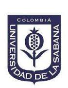 sabana colombia